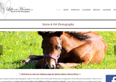 Life With Horses Photography